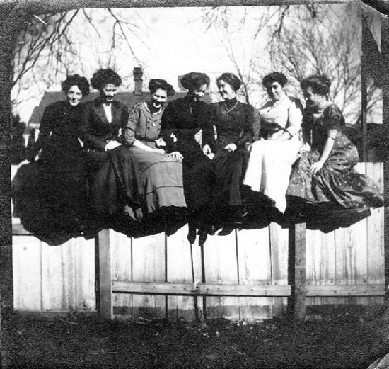 Ladies on a fence!